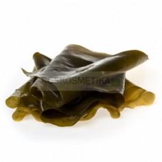 Листовая ламинария / Живые водоросли, 5 кг (R-cosmetics)