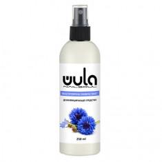 WULA Nailsoul, Дезинфицирующее средство, 200 мл